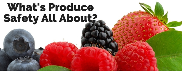 What is FSMA's Produce Safety Rule All About?
