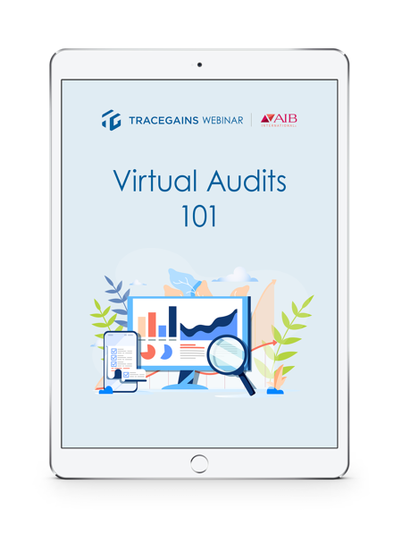 virtual-audits-101-ipad