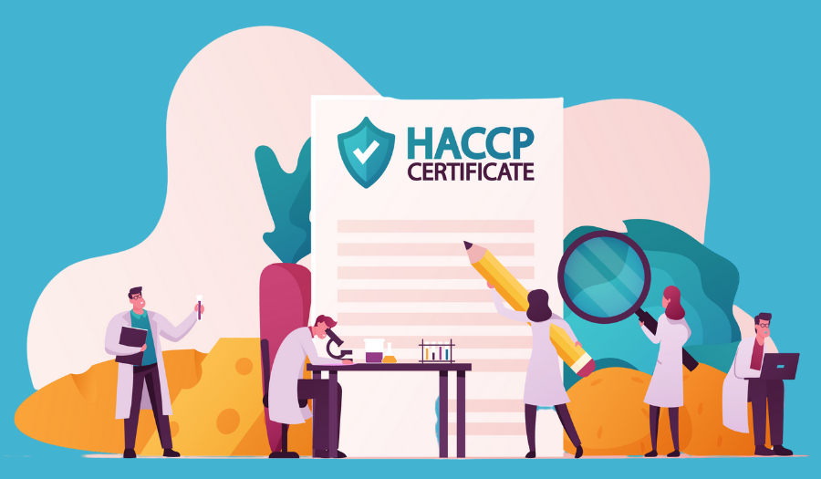 Tiny Characters with Microscope. and HACCP certificate
