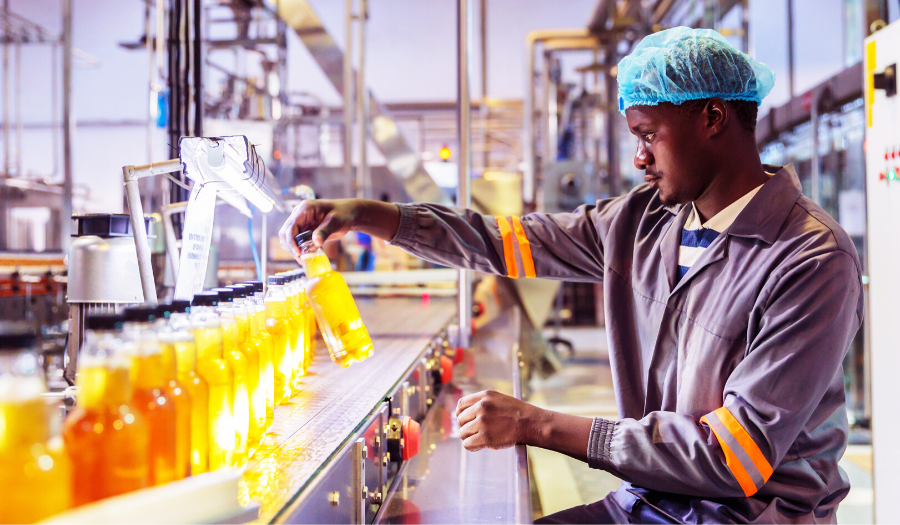 factory worker checking bottle on production line for flaws