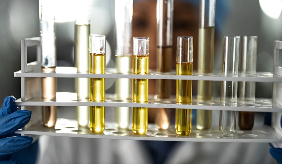 Woman in laboratory looking at various test tubes of oil
