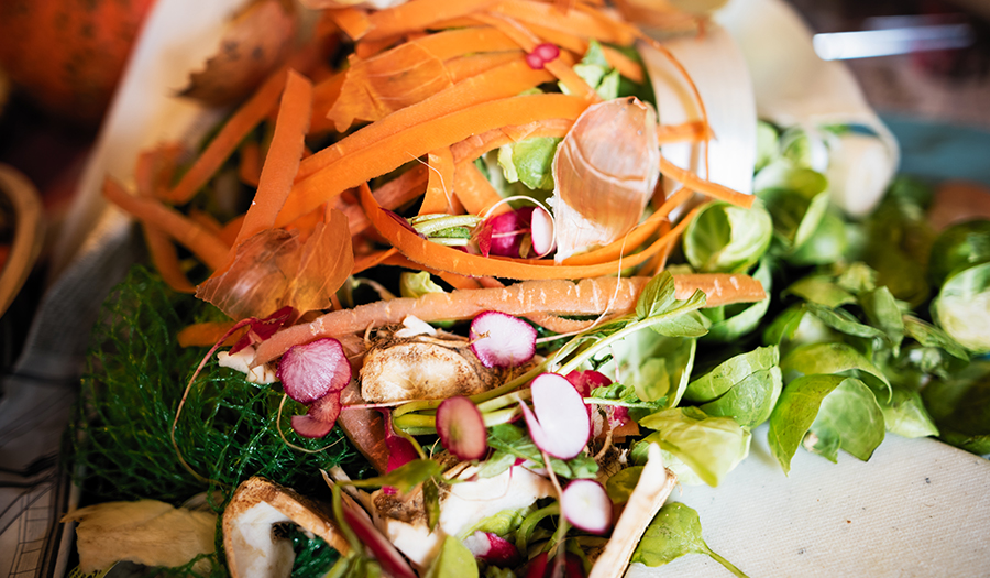 Colorful vegetable waste scraps